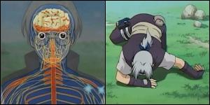 .:.Fiche de Shinzo.:. Ranshinshou